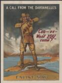 """A call from the Dardanelles : """"Coo-ee -- won't you come?"""": enlist now"""