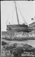 SS Bodalla wrecked at Narooma January 27, 1924 [picture].