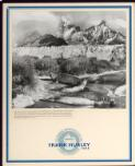 Hurley, Frank, 1885-1962. The only land in the vast expanse of tempestuous seas, South Georgia is the homing place of sea birds, penguins and seals. The Clapmatch or fur seal has long been exterminated but sea elephants are plentiful and make rookeries in secluded spots among the tussock grasses, where they breed, sleep, snore and grunt incessantly. Shackleton Expedition 1914-15 [picture] /