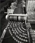 Kiwi Shoe Polish Corporate History | RM.