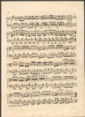 La Redowa polka [music]. - Page 2