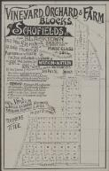 Vineyard, orchard & farm blocks at Schofields : near Blacktown on the Windsor line : for sale by auction on the ground, on Jan. 2nd. (New Years Day)  1893 at 3 p.m. / by Watkin & Watkin, auctioneers, 313 Pitt St., Sydney