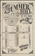 Summer Hill : for sale on the ground Saty. 21st. Novr. 1885 at 3.30 p.m. / Mills & Pile, auctioneers Pitt Street., auctioneers